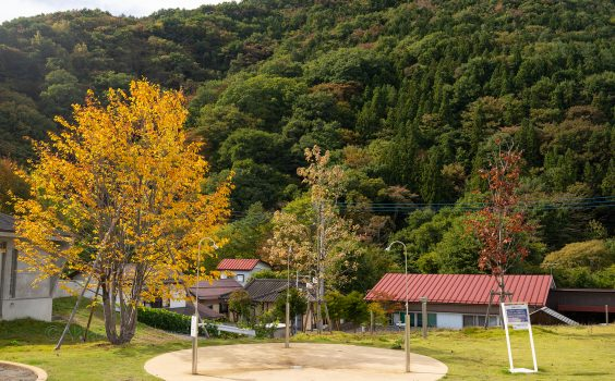 片品村の空高く、腹膨れる秋
